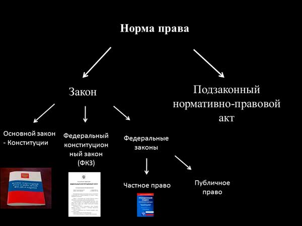 Структура нормы права: все нюансы