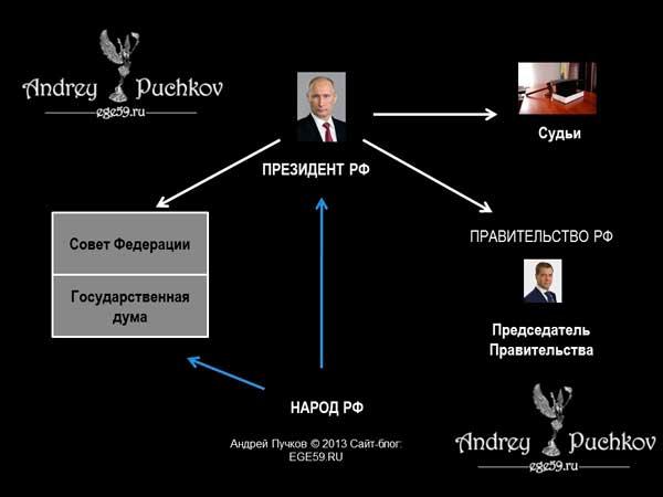 Органы власти в Российской Федерации: понятие, структура