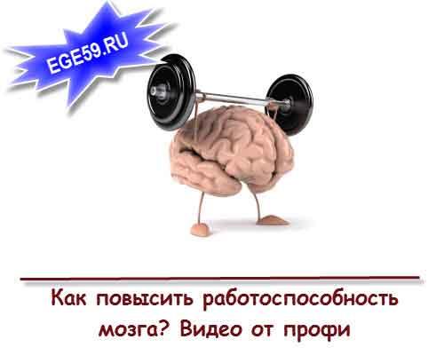 Как повысит работоспособность мозга?