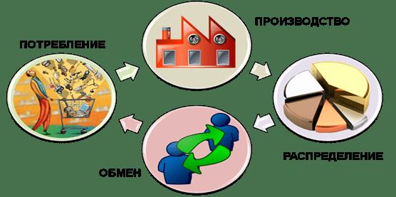 Виды экономической деятельности