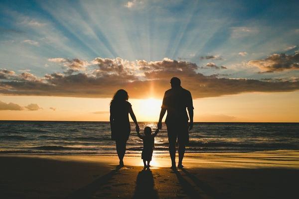 Функции семьи: самая суть с примерами