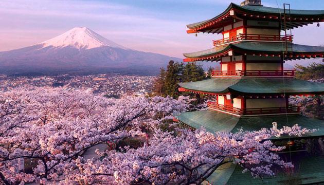 Туры в Токио, Япония