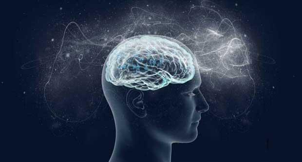 Формы познания: понятие, виды, функции